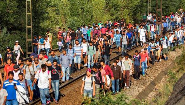 Uchodźcy w Kobyłce?
