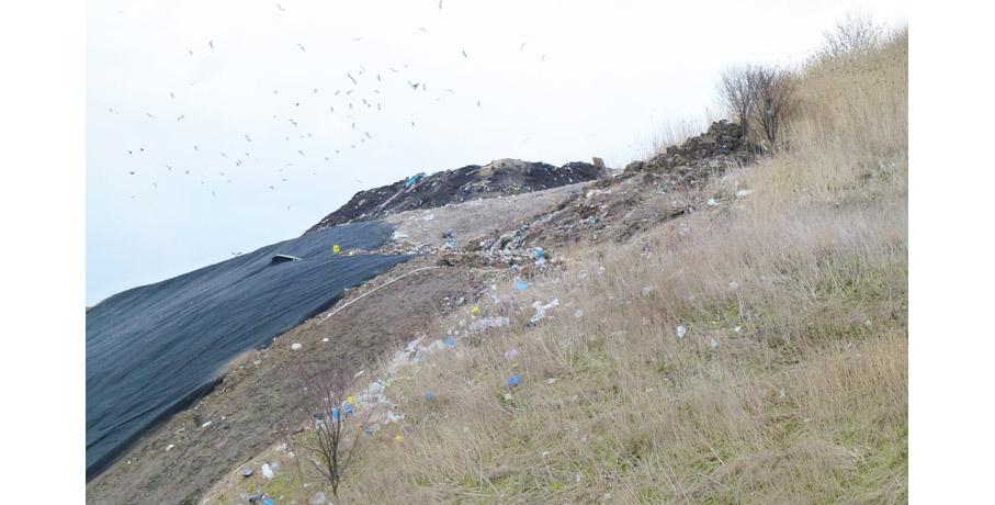 Tykająca, śmieciowa bomba