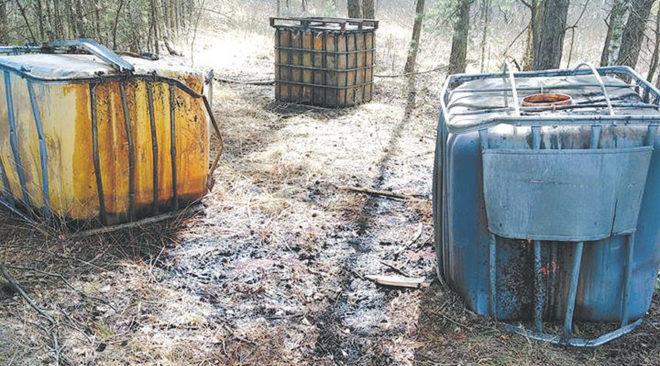 Znów chemia w lesie!