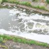 Tajemnicza piana w rzece