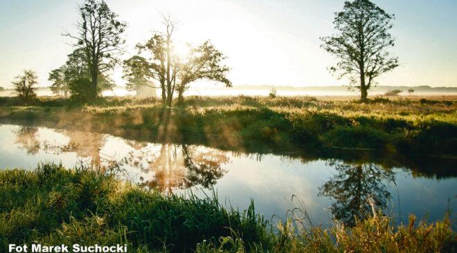 Nowe oblicze rzeki Liwiec