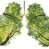 O alternatywach dla papierosa